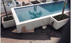 Avances en paisajismo area de piscina